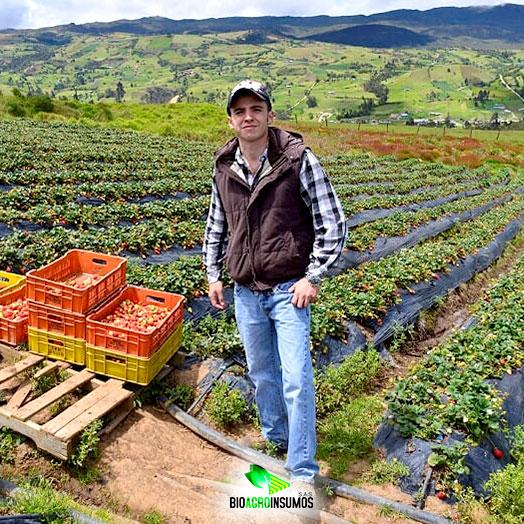 Equipo-de-Trabajo-Bioagroinsumos-Jose-Guillermo-Director-Tecnico-Cultivo.jpg